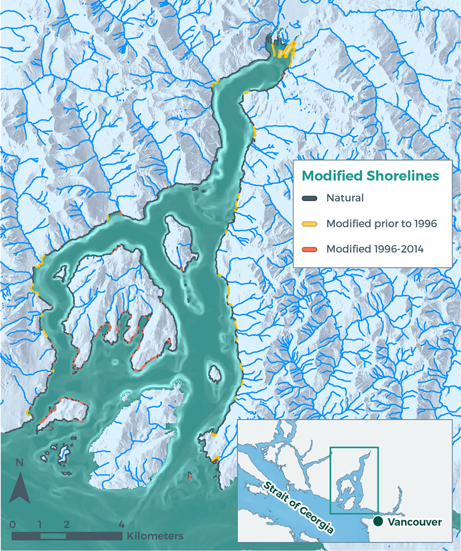 Figure 1. Natural and modified shorelines (2014), modified before and after 1996. No data available for Bowen Island due to cloud cover in satellite imagery.