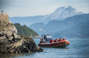 Sewell's Sea Safari provides visitors access to the rich marine wildlife in Howe Sound. (Photo: Jessica Heydahl)