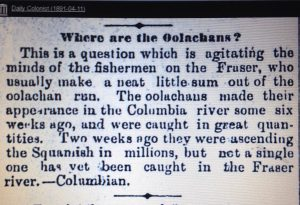 Clipping from the Daily Colonist newspaper, April 11, 1891. (Courtesy of J. Buchanan)