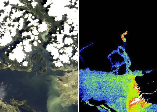 Full resolution (300 m) MERIS images of Howe Sound. The true colour image (left) shows high sediment levels at the head of the Sound and at the mouth of the Fraser River, while the fluorescence signal (right) gives an indication of different levels of chlorophyll (Chl) in Howe Sound. Red indicates high Chl, blue indicates very low Chl, while orange and green indicate intermediate values. The apparent high levels of Chl at the head of the Sound and near the mouth of the Fraser River are a false signal caused by high suspended sediment. (Image data provided by the European Space Agency and processed by S. King, Sea This Consulting.)