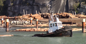 Blind Channel log sort in Squamish. (Photo: Bob Turner)